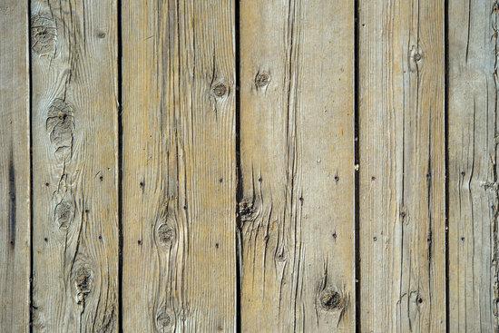 Wood Planks Backdrop