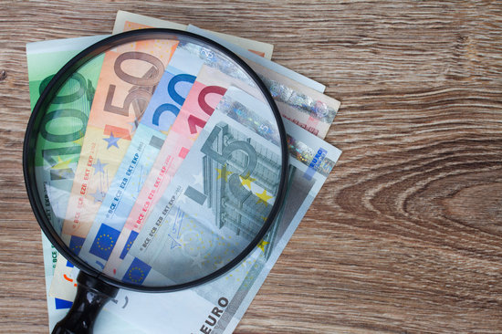 Euro Banknotes under Looking Glass