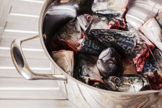 Pot Filled with Fish Heads