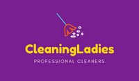 Purple Yellow Blue Orange Broom CLeaning Lady Professional Home Cleaners Business Card