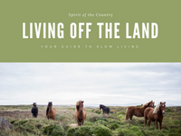 Living Off the Land Presentation