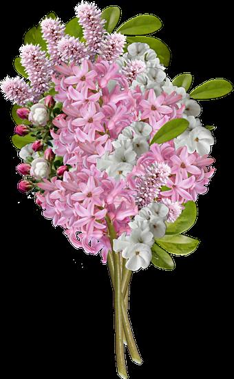 Flowers, Bouquet, Bouquet Of Flowers, Decoration
