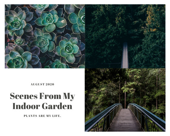 Green Nature Photo Book Collage