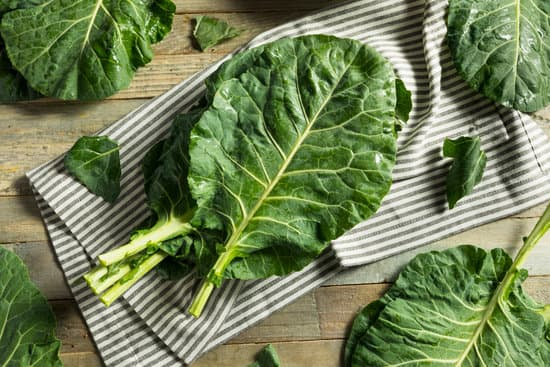 Collard Greens Nutritional Information