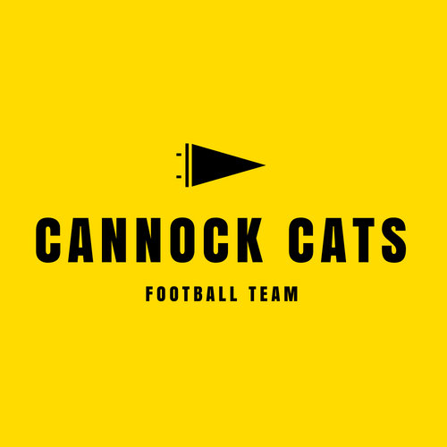 Black and Yellow Flag American Football Logo