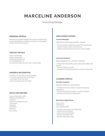 Blue Simple Professional Resume