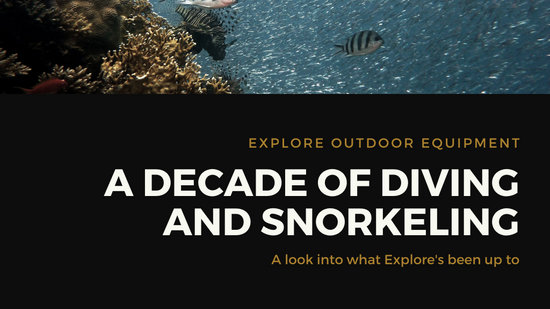 Charcoal Snorkeler and Corals Wide Presentation