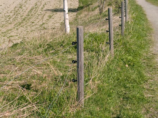 Solar powered electric fences for Agriculture
