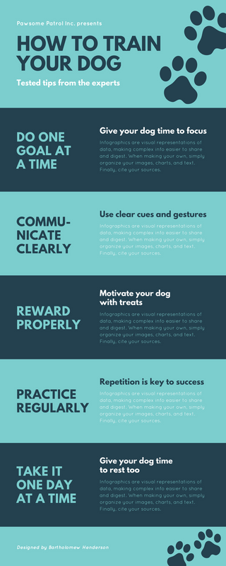 Blue Paw Print Dog Process Infographic