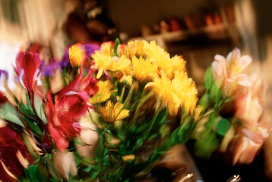 Flower bouquet indoors