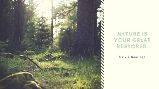 Green Woods Photo with Quote Nature Desktop Wallpaper