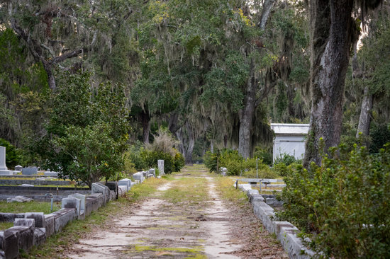 Grave Lined Dirt Road