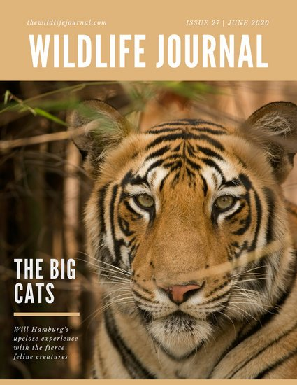 Yellow and Tiger Nonfiction Magazine Cover