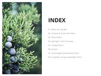Green Garden Photo Plants Product Presentation