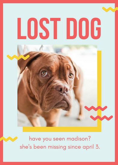 Red And Yellow Playful Lost Dog Flyer  Templates By Canva