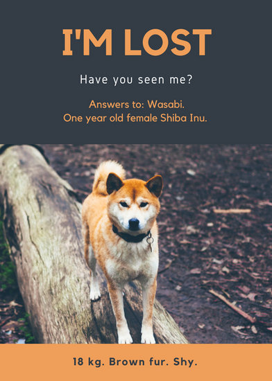 Blue And Orange Photo Lost Dog Flyer  Templates By Canva