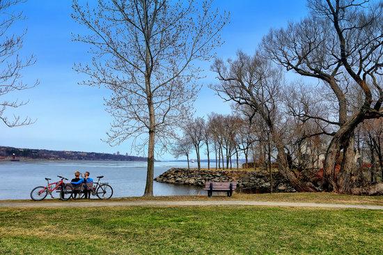 Rest, Retirement, Landscape, Park, River, Holiday