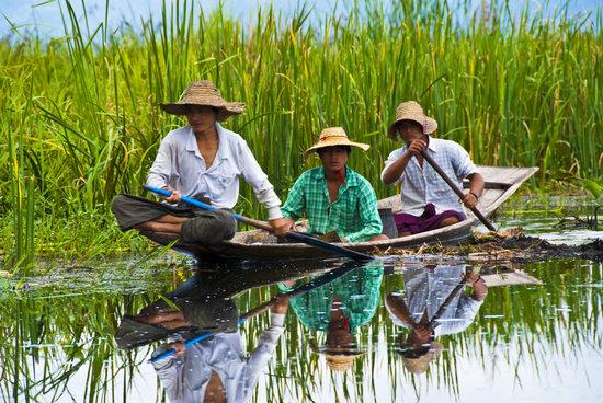 Travel, Myanmar, Burma, Asia, Water, Inle Lake