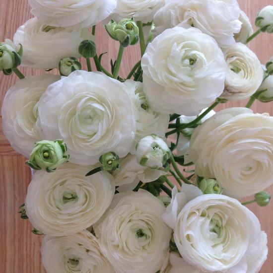 Buttercups, Flowers, White Flowers, Bouquet