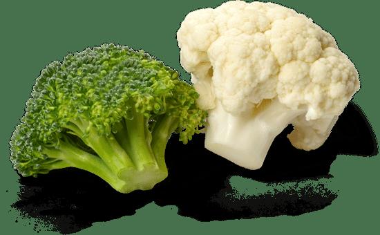 Fresh Broccoli and Cauliflower - Isolated