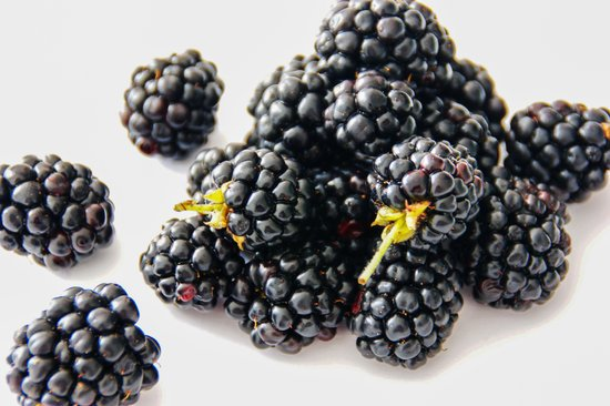 Are blackberries benefit to bearded dragons?