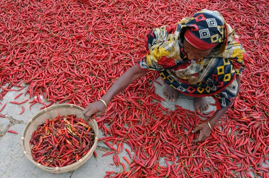 Woman Sitting on Floor of Red Chili