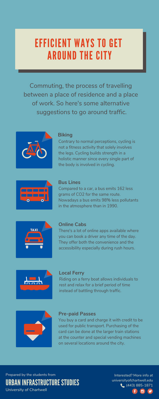 Descriptive City Commuter Infographic