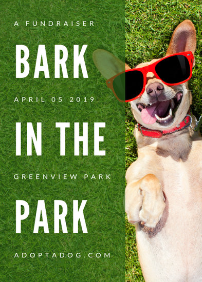 Green Dog with Shades Pet Fundraising Flyer