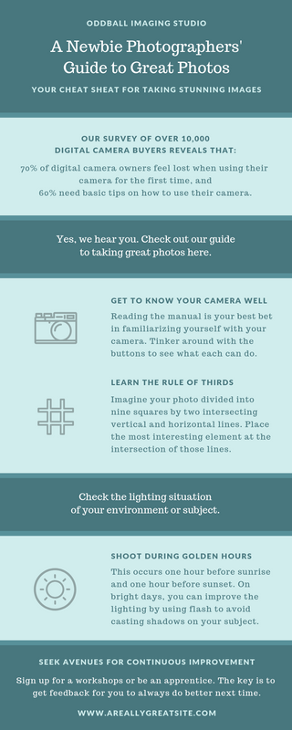 Teal Photography Process Infographic