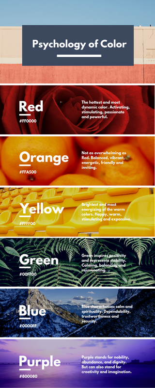Colour Psychology Infographic
