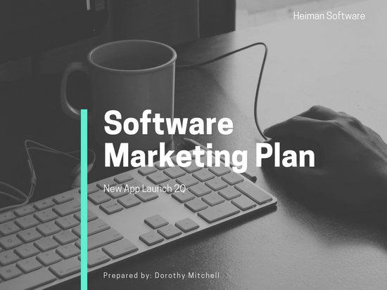 Aquamarine Software Marketing Plan Presentation
