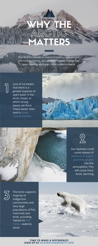 Arctic Charity Infographic