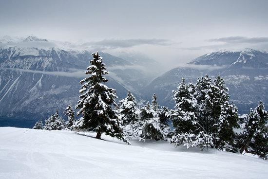 Ski season 3