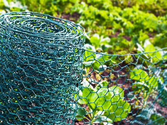 using a wire fencing to protect your garden from squirrels
