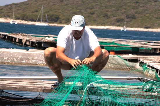 Aquaculture pollution