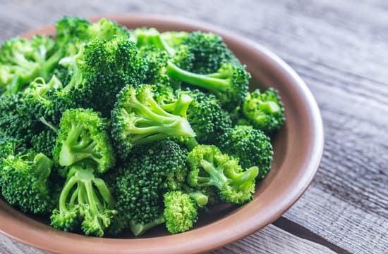 Can Sulcata Tortoises Eat Broccoli?