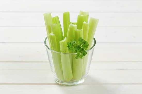 Nutritional Profile Of Celery: Can bearded dragons eat Celery?