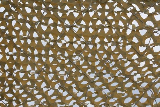 A Sunshade Net