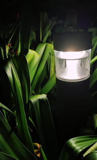 Buying Solar Pond Lights Guides