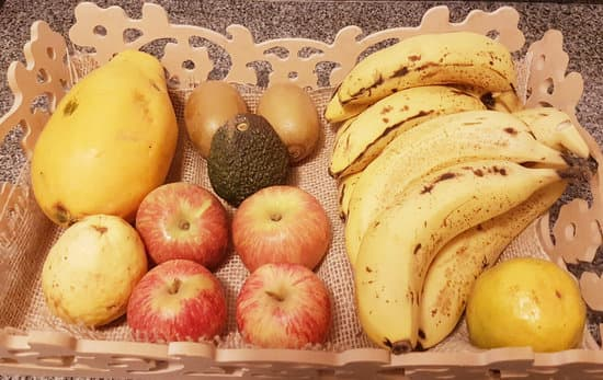 Benefits of Fruits to Chow Chows